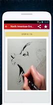 Wolf Drawing - screenshot thumbnail 04