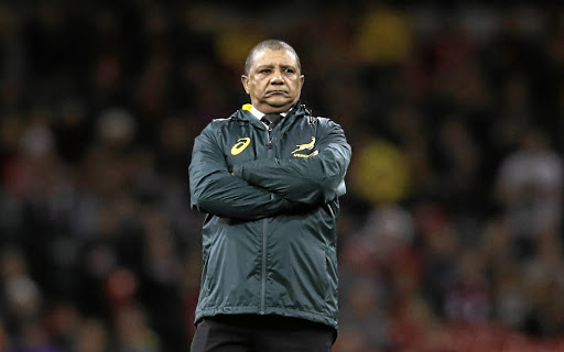 Coach Allister Coetzee. File photo.