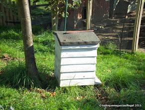 Photo: casa da abelhas