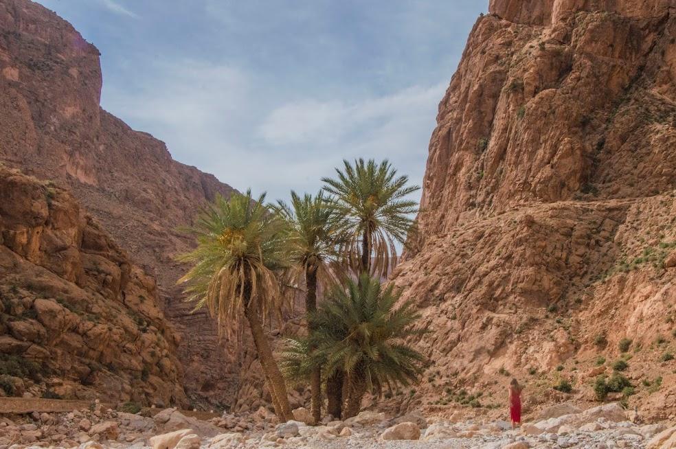 stedentrip-marokko