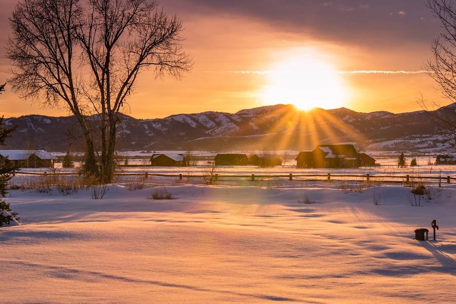 Sunkist by Chad Roberts - Landscapes Sunsets & Sunrises ( winter, sky, sunset, sundown, evening, sun,  )