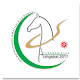 Aziada 2017 (app)