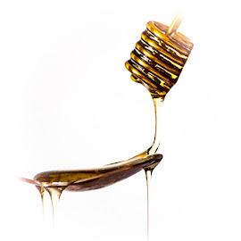 Honey all over by Vaska Grudeva - Food & Drink Ingredients