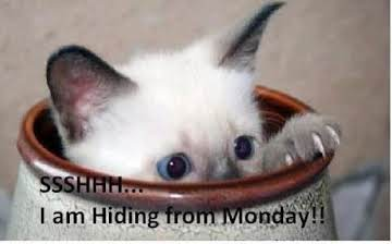 Image result for have a marvelous monday