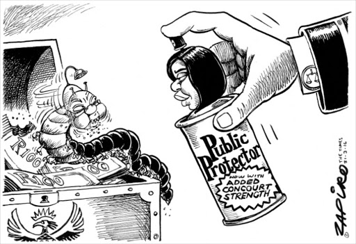 the nkandla saga as told by zapiro in cartoons