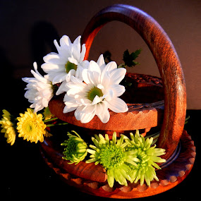 Mums and Wooden Basket by Kathy Rose Willis - Artistic Objects Still Life ( wood, green, white, basket, brown, yellow, mums,  )