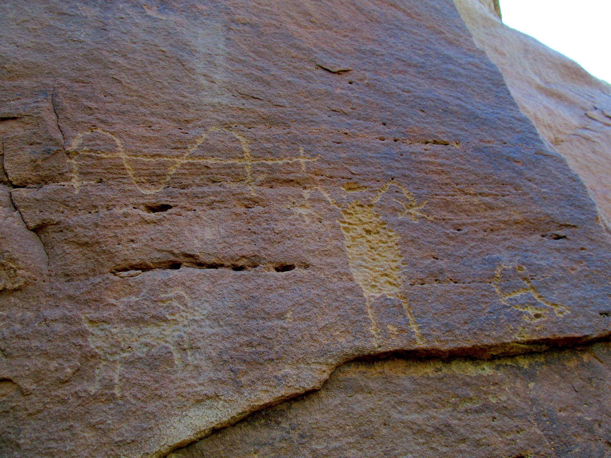 Photo: Petroglyphs high above the canyon floor