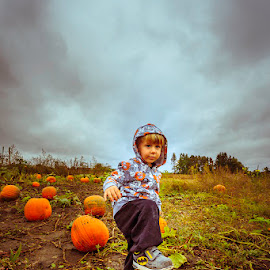 Pumpkin Picking by Jeff McVoy - Babies & Children Children Candids ( orange, sky, field, pumpkin picking, pumpkin patch, pumpkin, batman, child, sneaker )