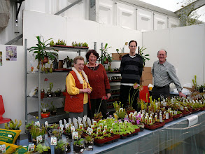 Photo: Special CP-exhibition at the Regio-Messe 2010. At the sales stand with plants from Thomas Carow: Christa Hartmeyer, Renate Keller, Christian Carle und Dr. Alfred Jäger.