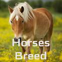 Horses Dictionary icon