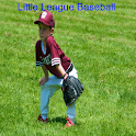 Little League Baseball icon