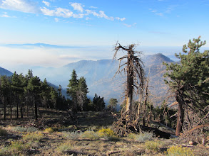 Photo: View south from Copter Ridge. Smoke chokes the canyons