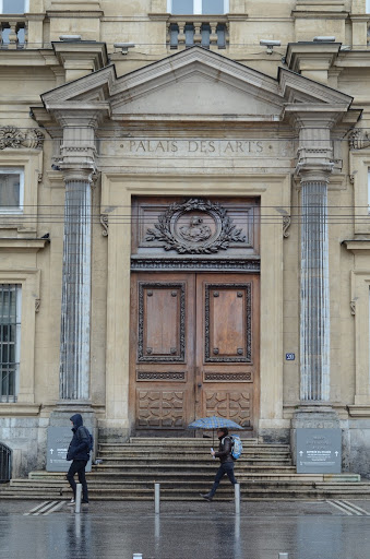 Entrance to the Museum of Fine Arts. Detail of the door seen from Place des Terreaux.