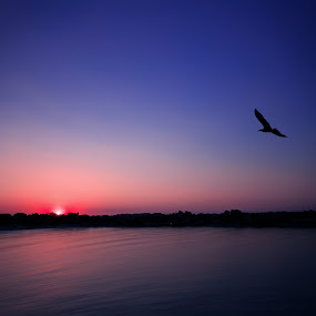 Sunset in Sozopol by Kiril Krastev - Landscapes Waterscapes ( red, sky, seascape, blue, waterscape, sunset, bulgaria, purple, water, sozopol, sea, black sea )