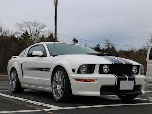 マスタング クーペ  GT Californiaspecialのカスタム事例画像 T さんの2019年12月07日18:33の投稿