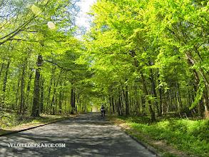 Photo: Forêt de Meudon - e-guide balade à vélo de Meudon au Château de Versailles par veloiledefrance.com