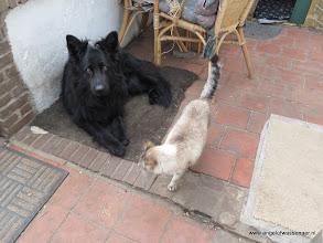 Photo: Met Sinjo is ook leuk hè Angel