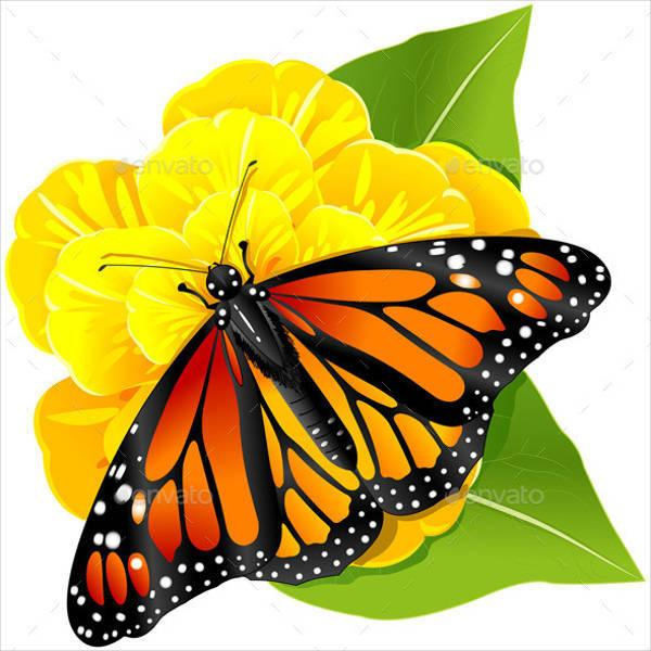 monarch butterfly illustration1