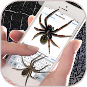 Spider on Screen – Funny Prank App
