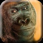 Dance wild Gorillas Live WP
