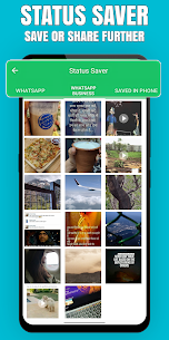 Download WAPunch – Status Saver, Pause it, Direct Chat App For Android 2