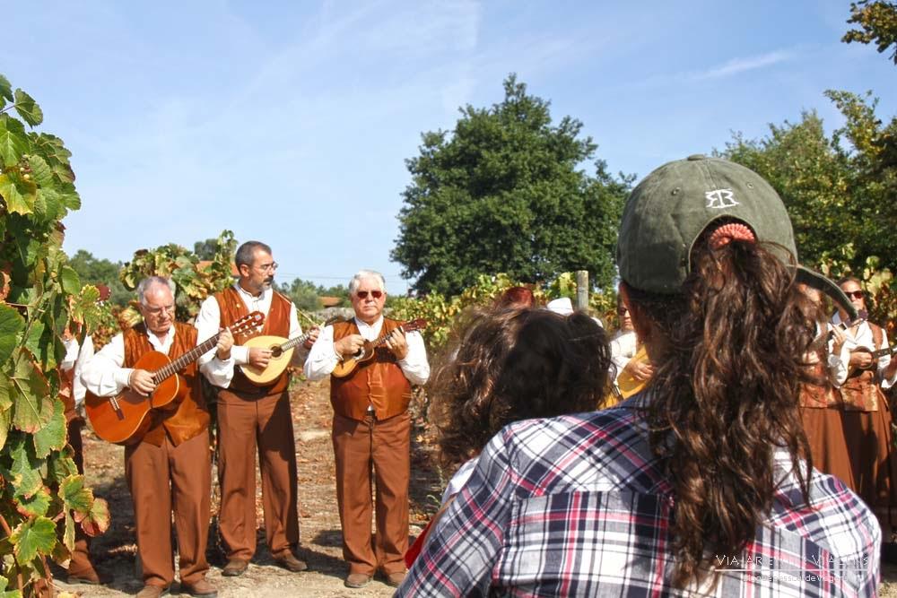 Festa das Vindimas em Viseu, uma experiência para arrebatar corações | Portugal