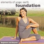 Elements of Yoga – Earth – Tara Lee