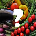 Food Quiz & Puzzle icon