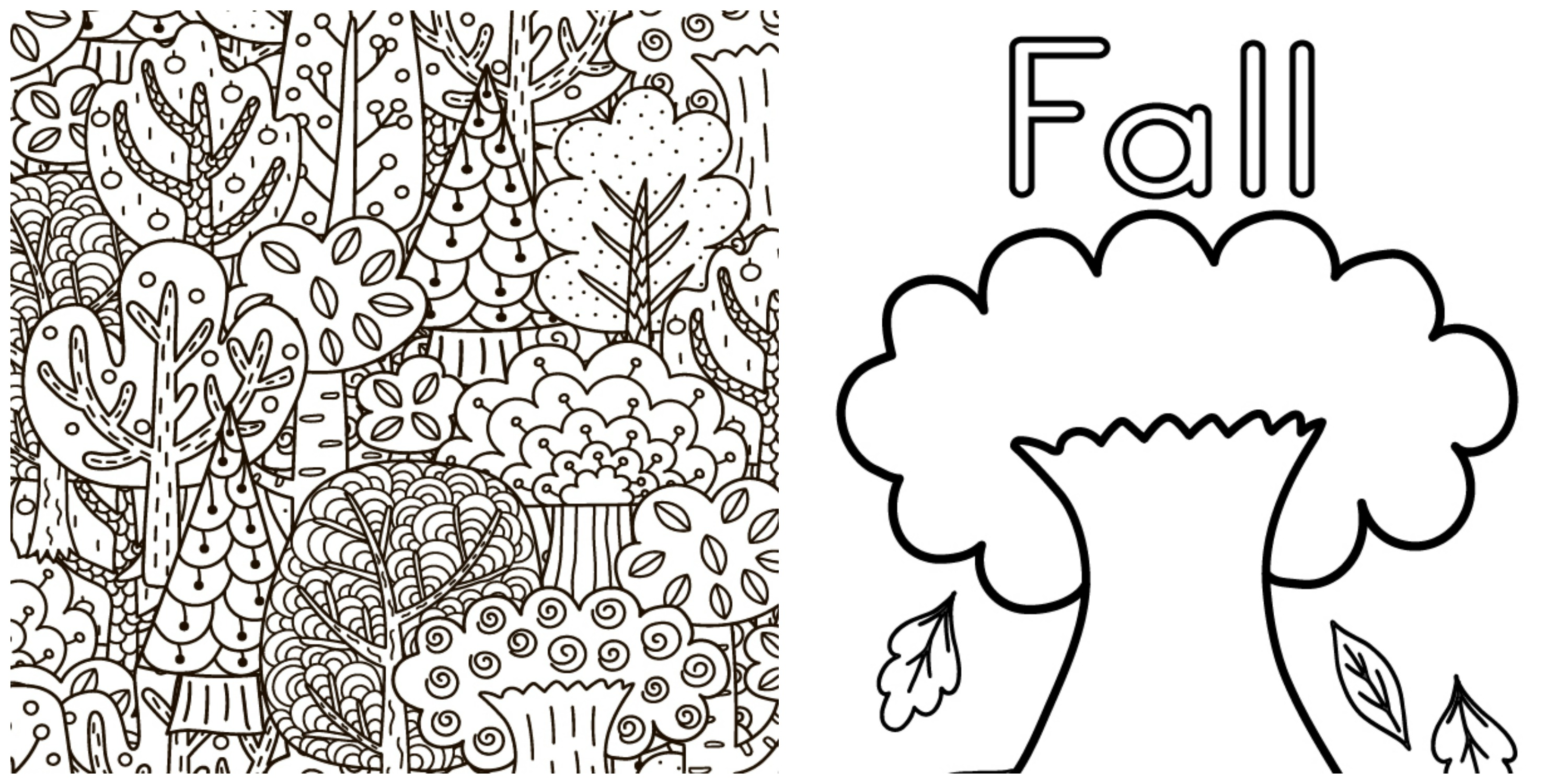 Download your Fall Coloring Sheets here!
