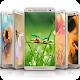 Ladybug HD Free Wallpaper | 4K Background Image Download on Windows