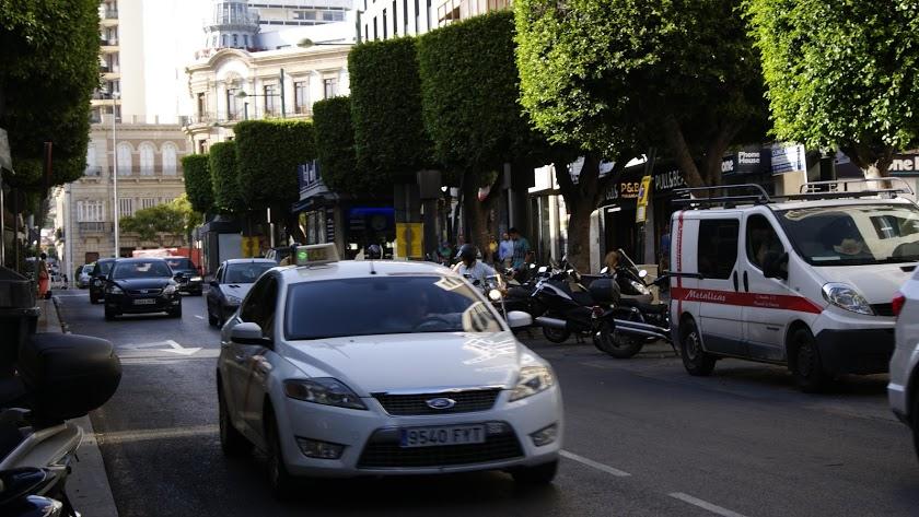El Gobierno municipal busca soluciones que le permitan peatonalizar el Paseo