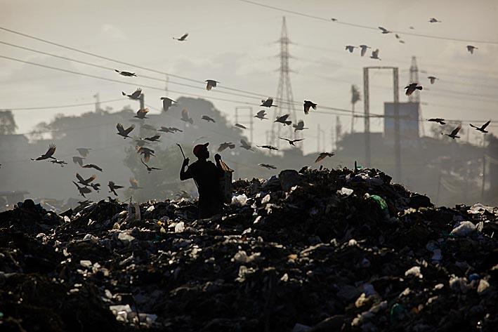 Photo: Scavenging at Mombassa's dump. Kenya. Photo copyright: Timothy Allen Twitter - http://twitter.com/MrTimothyAllen Instagram - http://instagram.com/timothy_allen