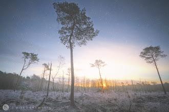 Photo: Winter Blues
