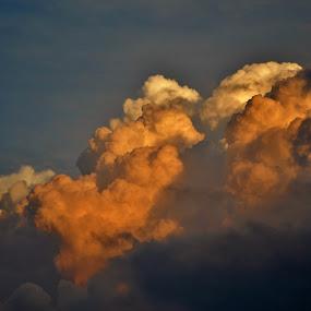 Summer skies. by Viana Santoni-Oliver - Landscapes Cloud Formations ( clouds, sky, nature, puffy, dark, summer, storm, light, dusk, sun )