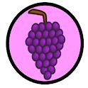 VinoQuiz icon