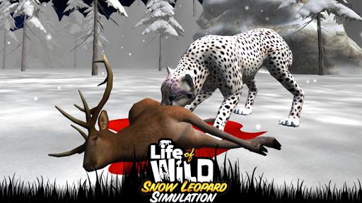 野生雪豹的3D生活