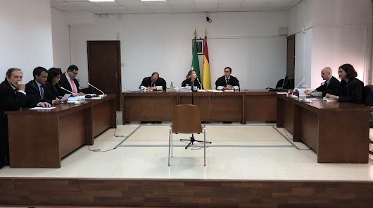 El tribunal y los letrados de las partes