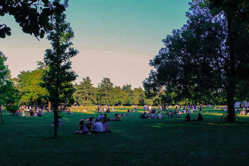Mille chiacchiere tra mille fili d'erba  di ermix97