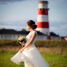 Wedding photographer Sofya Moldakova (Wlynx). Photo of 22.11.2017