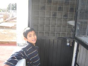 Photo: El hijo de Pancho el colombófilo más joven de Tepatitlan, al frente del palomar de vuelo de mis machos adultos.