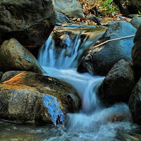 by Sony Arezki - Nature Up Close Rock & Stone
