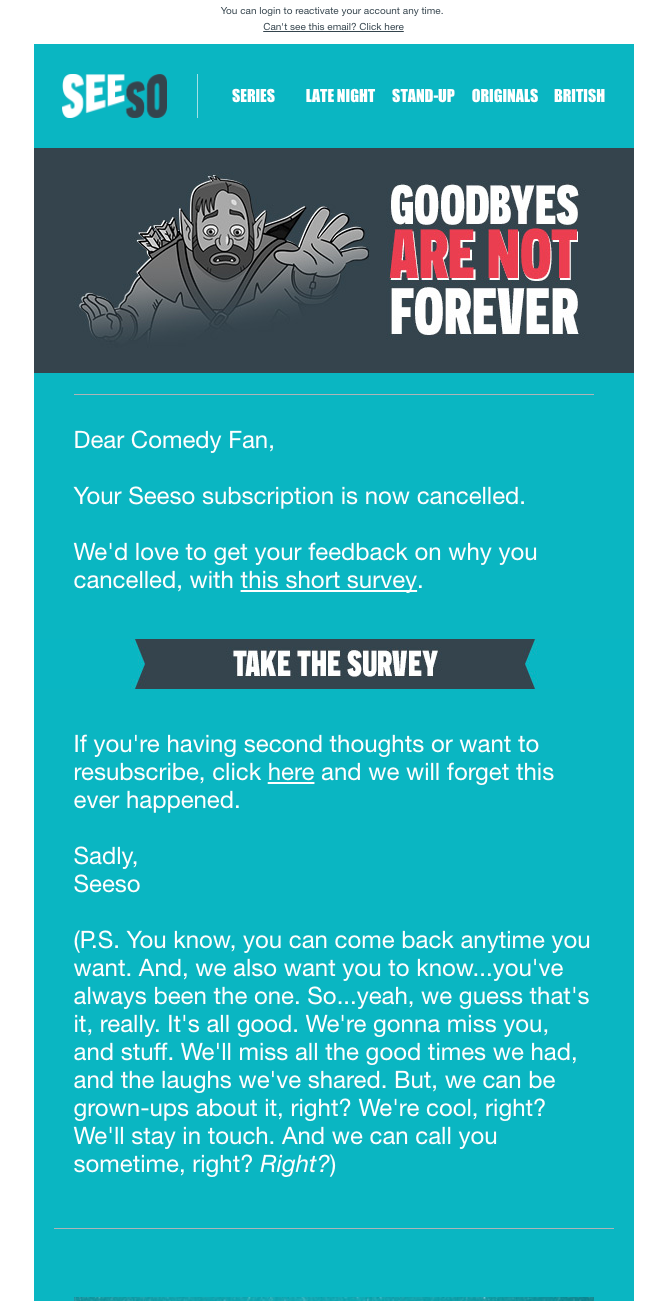 Seeso Customer Feedback Example