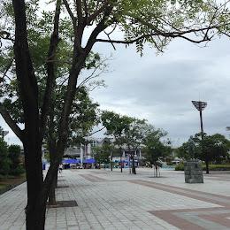 鳴門・大塚スポーツパークのメイン画像です