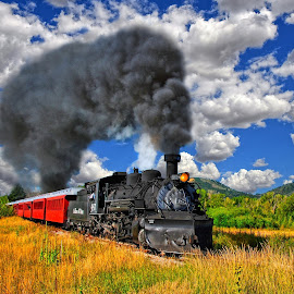 Northbound to Colorado by Stephen Botel - Transportation Trains ( grasses, clouds, railroad tracks, sky, railroad, steam train, colorado, trees, train, tourist train, passenger cars, smoke, new mexico, steam )