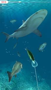 Rapala Fishing – Daily Catch 3