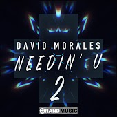 Needin' U (I Needed U) (Radio Mix) (feat. Juliet Roberts)