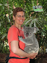 Photo: Koala and Robin, Wildlife Habitat, Port Douglas. A terrific place, lotsa critters very well cared for.