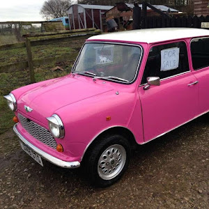 Classic Pink Mini Italian Job Rally | Krys Kolumbus Travel