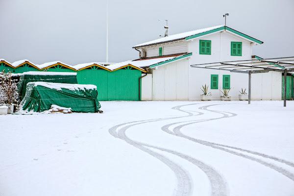 Nevammare, Forte dei Marmi di FrancescoPaolo