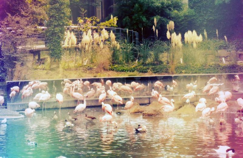 Lago incantato di mifani